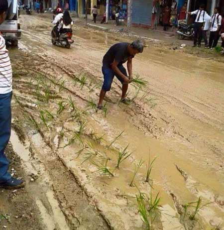 man-sows-paddy-in-the-middle-of-the-street